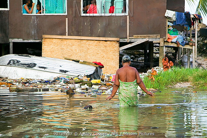 Woman walking past houses flooded by seawater on Funafuti, Tuvalu. These low lying islands are very susceptible to sea level rise, March 2007
