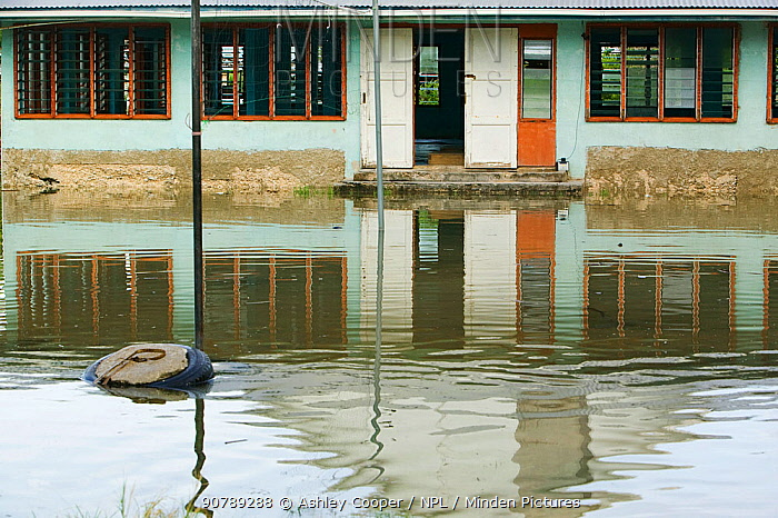 Houses flooded by seawater on Funafuti,Tuvalu. These low lying islands are very susceptible to sea level rise, March 2007