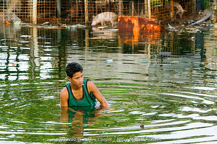 Man in water as Funafuti Atoll is flooded by sea water, Tuvalu. These low lying islands are very susceptible to sea level rise, March 2007
