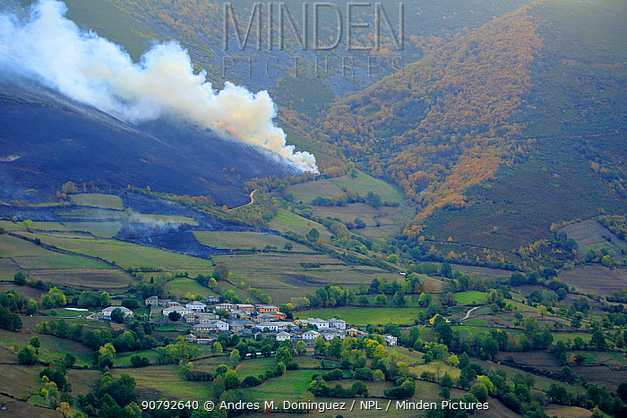 Fire in the Cantabrian mountains, Degana e Ibias Natural Park, Asturias, Spain, October