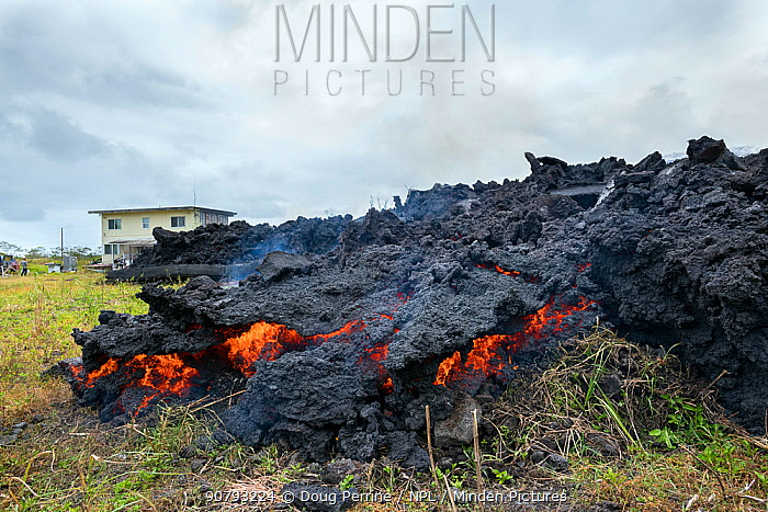 A'a lava flowing over land, where it has pushed down a house and set it on fire. The lava originated from Pu'u O'o, Kilauea Volcano, from a fissure in Leilani Estates, near Pahoa, Puna, Hawaii, USA.  June 2018.