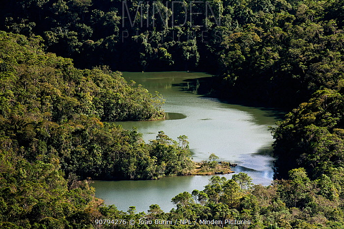 Lake in Intervales State Park, Sao Paulo, Atlantic Forest South-East Reserves, UNESCO World Heritage Site, Brazil.