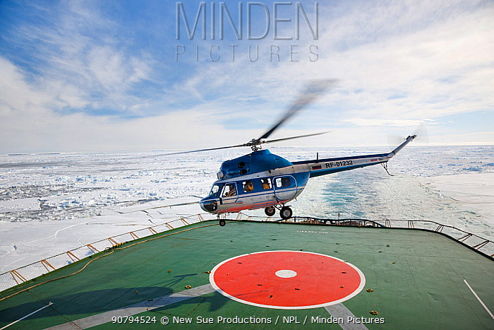 Helicopter taking off from Russian icebreaker Kapitan Khlebnikov in the Weddell Sea en route to Snow Hill island emperor penguin colony. Antarctica.
