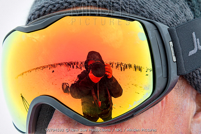 Photographer Sue Flood taking picture of herself and colony of Emperor penguin (Aptenodytes forsteri) in reflection of someone's goggles, Gould Bay, Weddell Sea, Antarctica.
