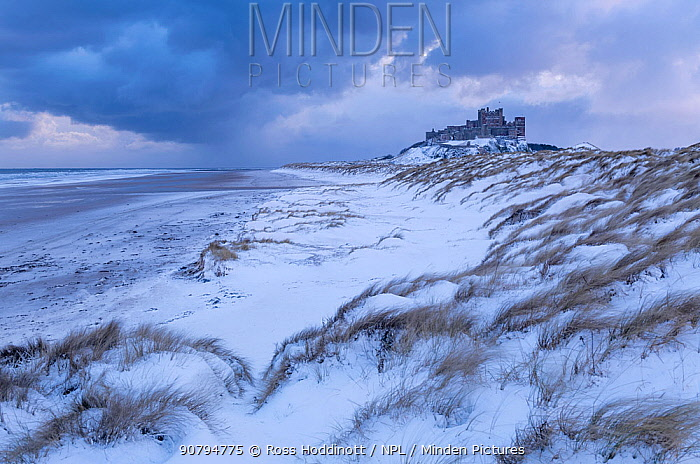 Bamburgh Castle and sand dunes after heavy snowfall, Bamburgh, Northumberland, UK. March 2018.