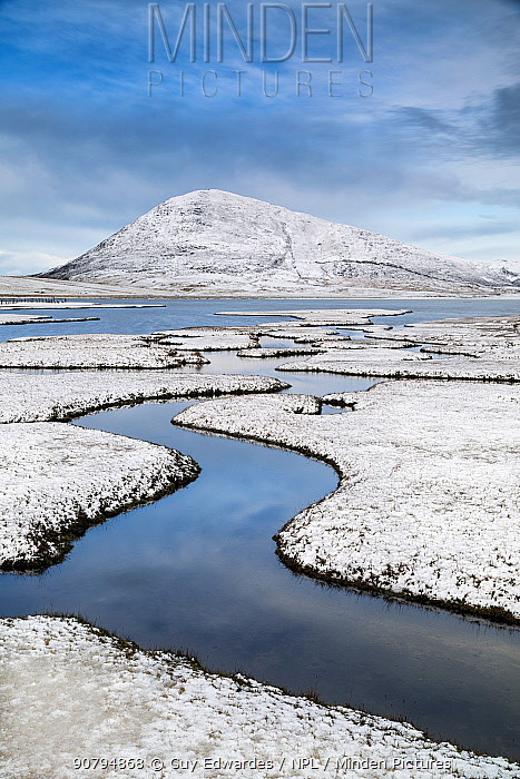 Saltmarsh. Isle of Harris, Scotland, UK. March, 2015.
