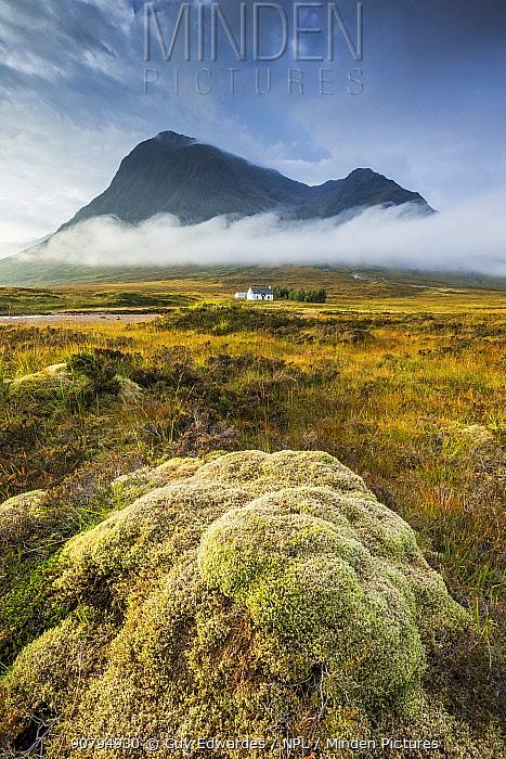 Buachaille Etive Mor, Rannoch Moor, Highlands, Scotland, UK. September 2013.