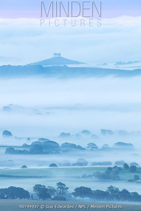 Marshwood Vale and Colmer's Hill from Pilsdon Pen, Dorset, England, UK. August 2017.