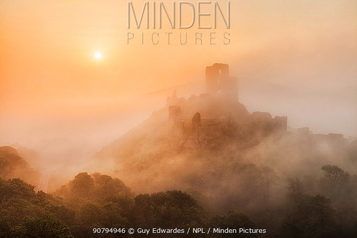Corfe Castle in the mist, Corfe, Isle of Purbeck, Dorset, England, UK. May 2012.