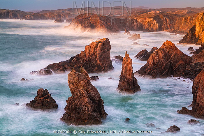 Sea stacks, Mangurstadh, Aird Feinis, Isle of Lewis, Outer Hebrides, Scotland, UK. March 2014.