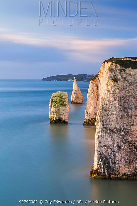 The Pinnacles from Ballard Down, Swanage, Isle of Purbeck, Dorset, England, UK. December 2014.