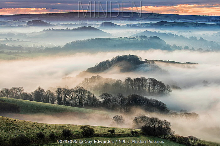 View from Colmer's Hill over countryside with  low lying mist, Bridport, Dorset, England, UK. April 2016.
