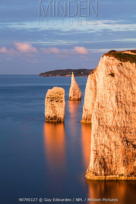 The Pinnacles, Ballard Down, Jurassic Coast, Isle of Purbeck, Dorset, England, UK. August 2017.