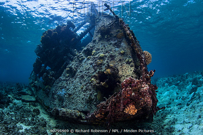 Wreck of the  Coomondeery a 132-tonne, 110- foot steamship, later converted to diesel auxiliary in Australia,  was wrecked on North Minerva Reef in 1969. January 2015
