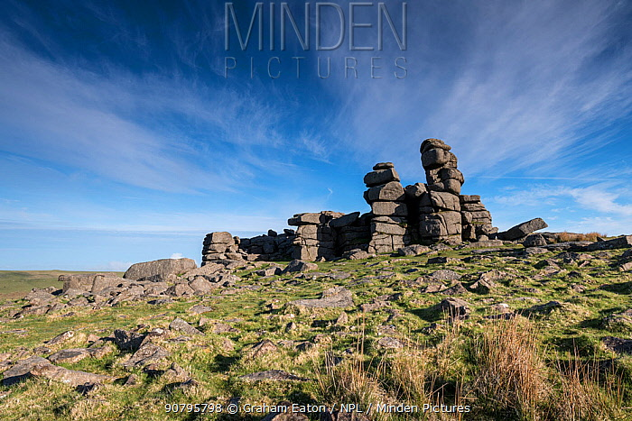 The granite outcrop of Great Staple Tor, Princetown, Dartmoor, Devon, UK, May