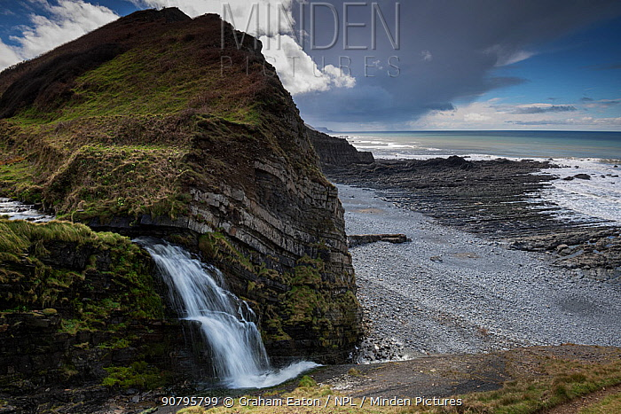 A small waterfall on the coast at the side of St Catherine's Tor, near Hartland Quay, Devon, UK, March