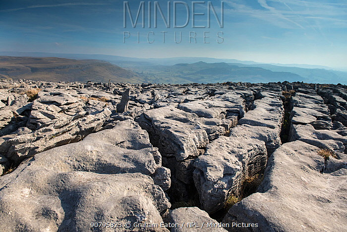 A Limestone Pavement with well developed Clints (blocks) and Grykes (gaps). This is Carboniferous age limestone, part of a large area of Karst above Austwick, Yorkshire, UK. Slightly acidic rainfall, erodes and enlarges naturally occurring joints in the limestone leaving a characteristic pavement surface. February 2018.