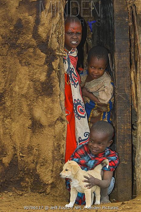 Maasai children with dog peering out of hut in Maasai village, Kenya. September 2006.