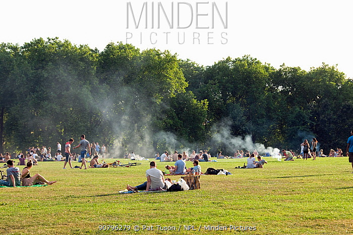 Smoke from barbecues polluting the environment over Highbury Fields on a hot summers day, London Borough of Islington, England, UK, September 2012.