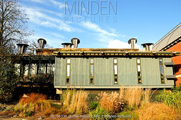 The Centre for Understanding the Environment (CUE) an eco building with cowls which incorporate a passive ventilation system on the green roof. The Horniman Museum London UK