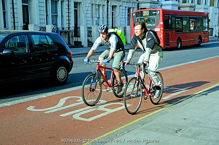 Two young male cyclists in bus lane, London Borough of Islington, UK, April 2010