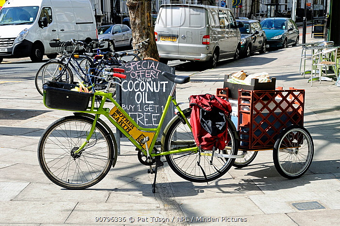 Delivery bicycle with trailer, Mother Earth shop, Newington Green, London Borough of Islington, UK