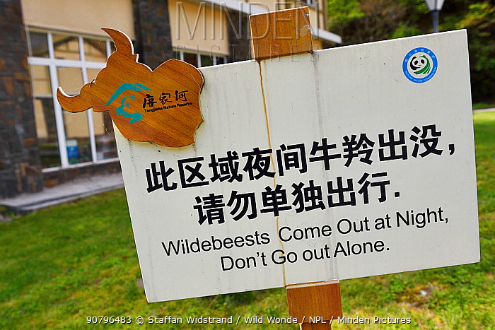 Sign which reads 'Wildebeests Come out at night, don't go out alone', this seems to be mistranslation of the Chinese for Takin. Tangjiahe National Nature Reserve, Qingchuan County, Sichuan province, China