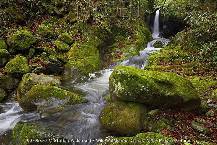 Waterfalls, Tangjiahe National Nature Reserve,Qingchuan County, Sichuan province, China