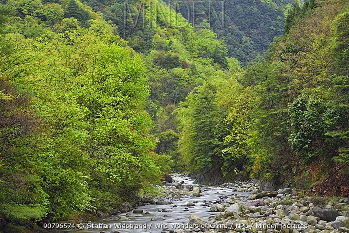 Landscape picture of tangjiahe river, Tangjiahe National Nature Reserve,Qingchuan County, Sichuan province, China