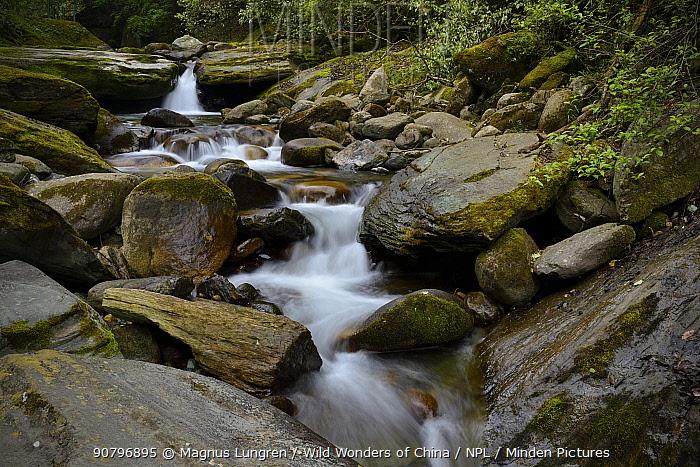 Small stream, Tangjiahe National Nature Reserve, Sichuan Province, China