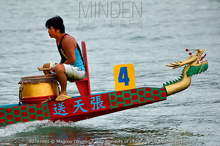 Training for the Hong Kong Dragon Boat Festival, also known as the Tueng Ng Festival, is one of the favourites of Chinese Festivals celebrated in the territory. Sai Kung, Hong Kong, China. June, 2016.