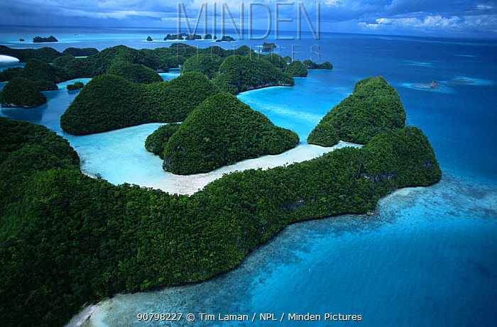 Aerial view of the Rock Islands, Palau, Micronesia, December 2001.