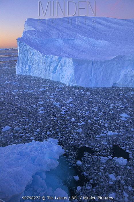 Large iceberg in Cierva Cove, Antarctica, at dusk, February 2009