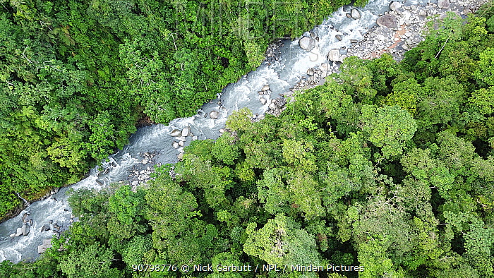 Aerial view of small river and mid-altitude montane rainforest. Manu Biosphere Reserve, Amazonia, Peru. November 2017.