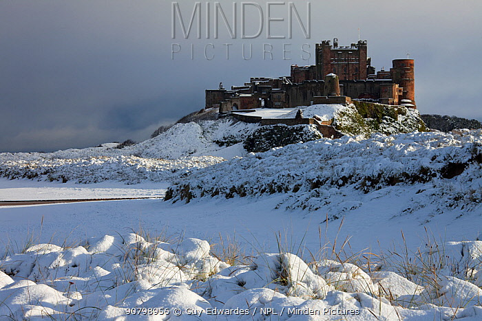 Bamburgh Castle in the snow, Northumberland, England, UK. November 2010