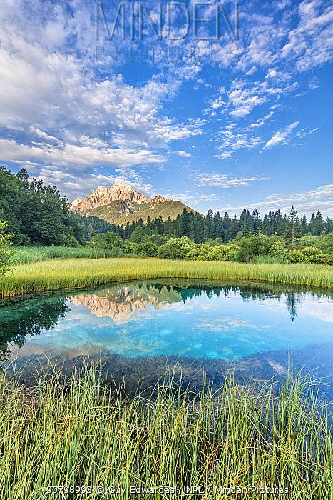 The Julian Alps and Sava Spring, Zelenci, Slovenia. July 2017