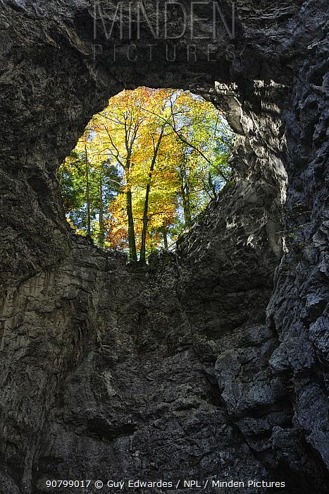 Collapsed cave roof revealing autumn foliage, Zelska Jame cave system, Rakov Skocjan karst Gorge, Notranjska, Slovenia.