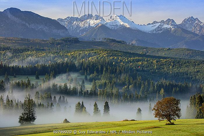 Landscape of the Tatra Mountains from Lapsze Nizne, Poland, September 2017.