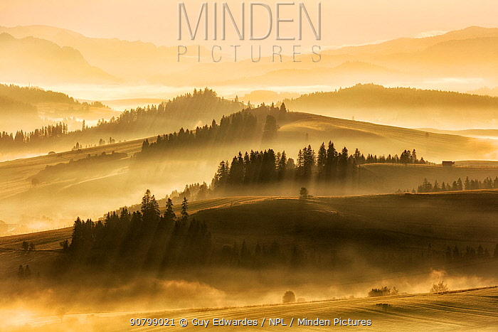 Pieniny Mountains at dawn with mist, Poland, September 2017.