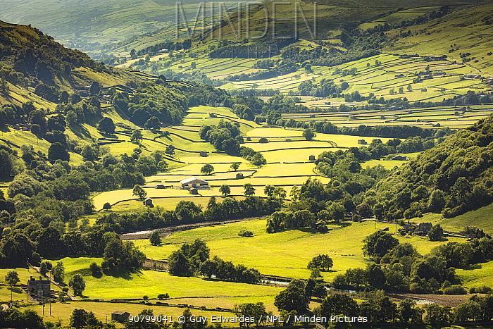 Swaledale, Yorkshire Dales National Park, North Yorkshire, England, UK, June 2017.