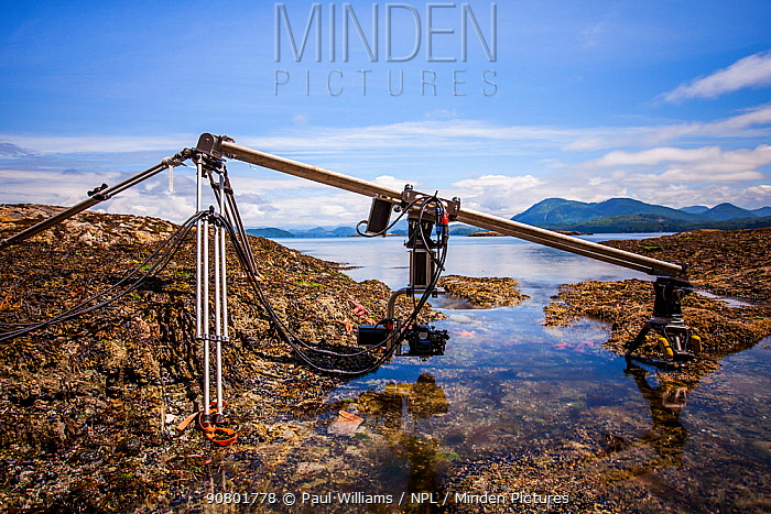 Specialist motion control rig to film underwater timelapse in a rockpool for BBC Blue Planet II, Vancouver island, British Columbia, Canada, July.
