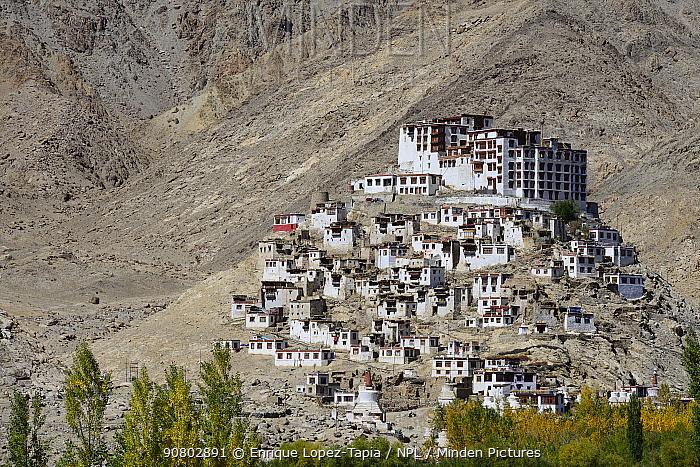 Chemrey Buddhist Monastery. Ladakh, India, September 2018.