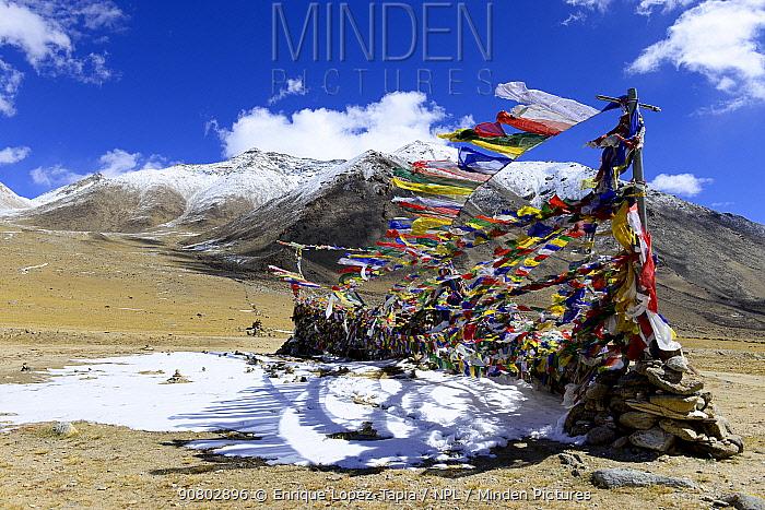 Buddhist prayer flags in Polo Kongka La at 4970 meters altitude, Chantang Wildlife Sanctuar, Ladakh, India, September 2018.