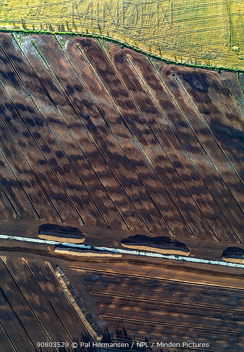 Bog used for peat extraction, aerial view. Skarnes, Hedmark, Norway. September 2017.