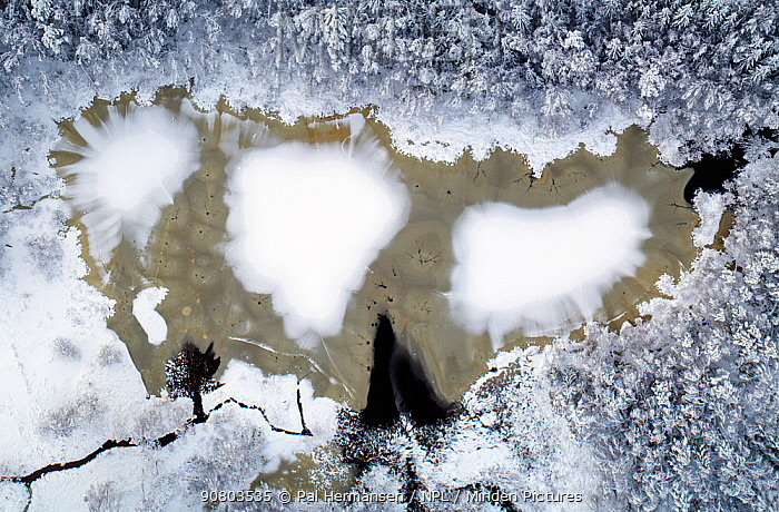 First snow on winter on frozen lake surrounded by trees, aerial view. Akershus, Norway. December 2018.