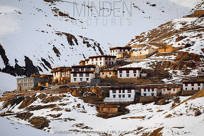 Chicham village in a winter afternoon, Spiti valley, Cold Desert Biosphere Reserve, Himalaya mountains, Himachal Pradesh, India, February