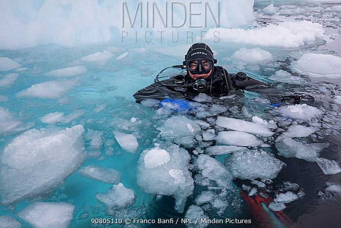 Photographer Franco Banfi in water before diving under sea ice. Tasiilaq, East Greenland. April 2018.