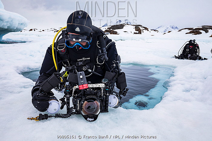 Diver checking camera before diving under sea ice near iceberg. Tasiilaq, East Greenland. April 2018.