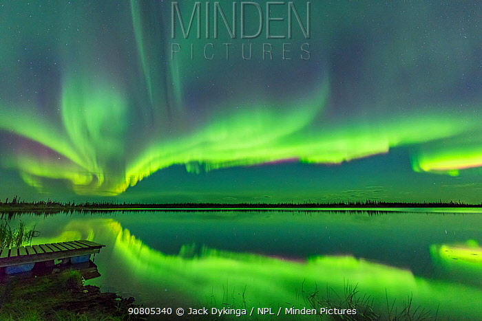 Aurora Borealis reflected in Polar Lake, near Great Slave Lake, Northwest Territories, Canada. September 2018.
