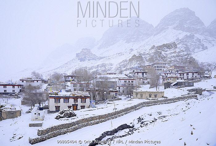 Key village and monastery (Buddisth) snowed in Spiti valley, Cold Desert Biosphere Reserve, Himalaya mountains, Himachal Pradesh, India, february